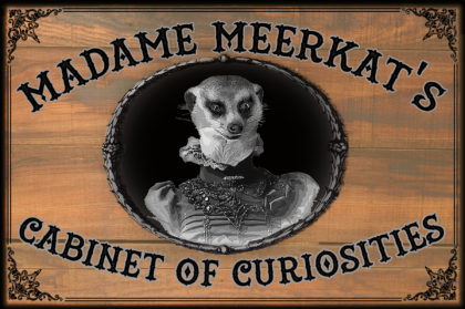 Madame Meerkat's Cabinet of Curiosities